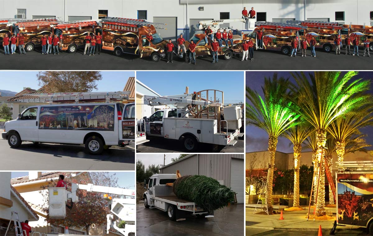 Commercial Christmas Lighting Installation