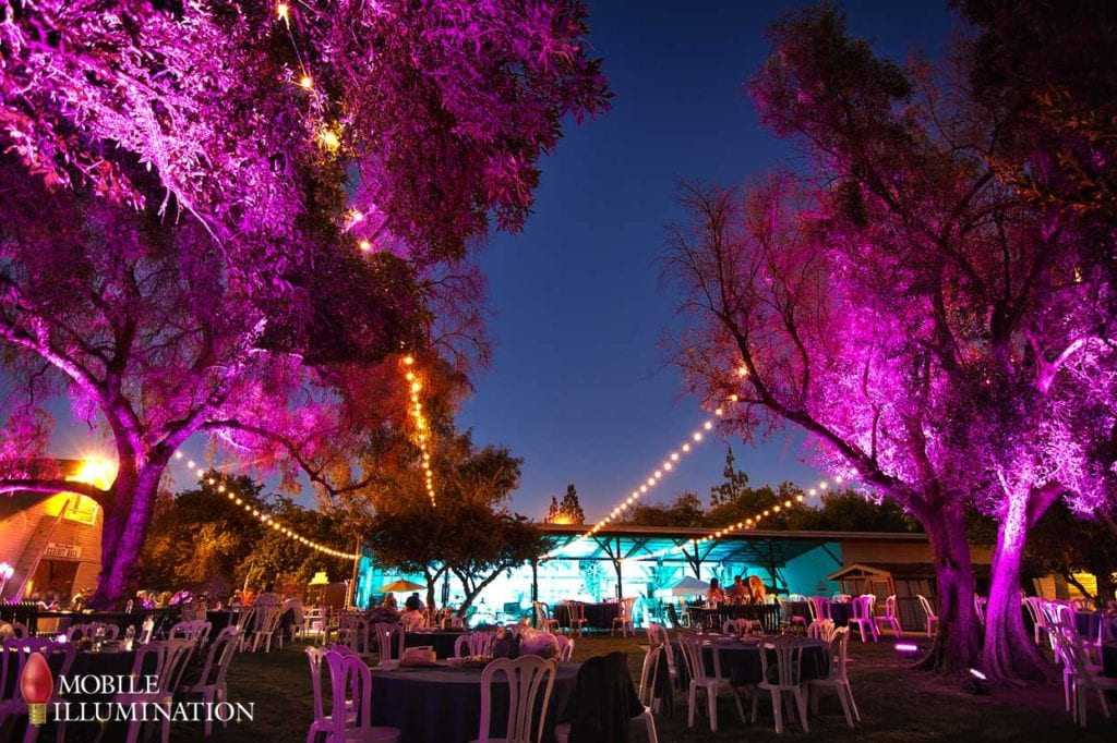 Supporting Communities We Serve: Event Lighting for BumbleBee Foundation.