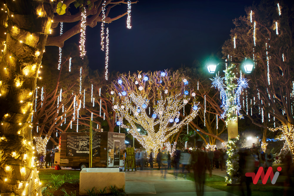 Christmas Lighting Installation - Burton Chace Park