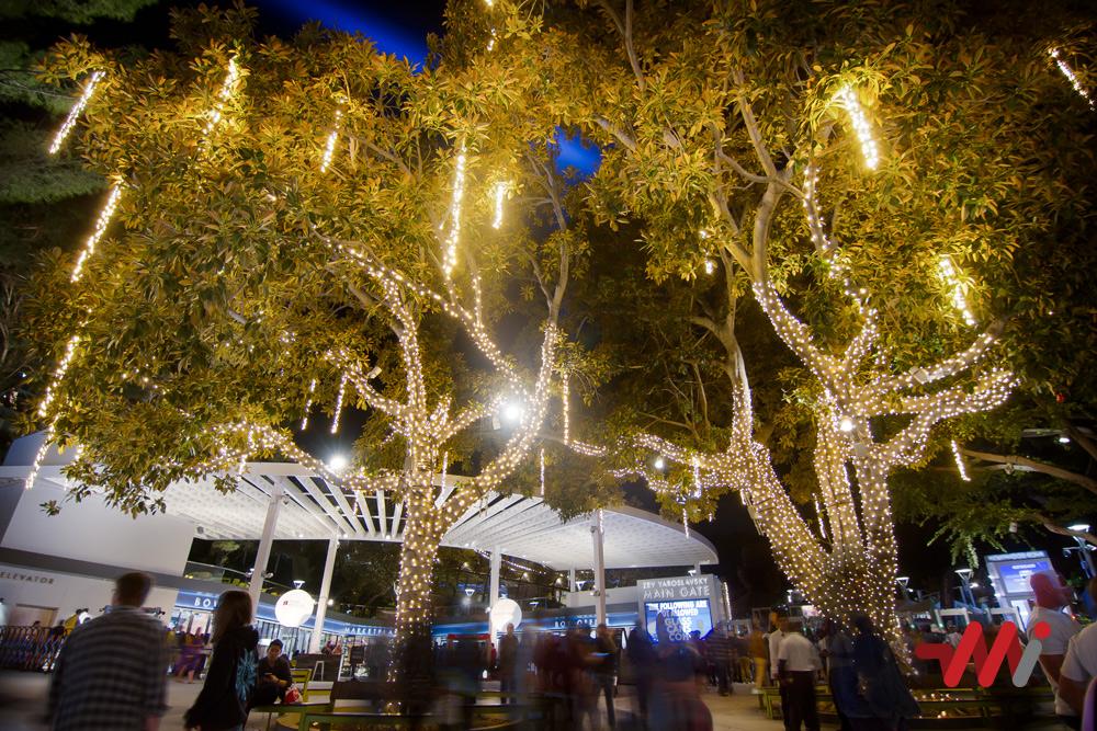 Christmas Lighting Installation - Hollywood Bowl