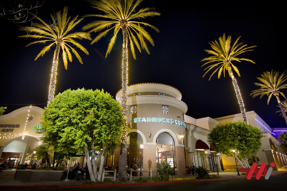 Year-Round Lighting Installation - Uplighting Palm Trees