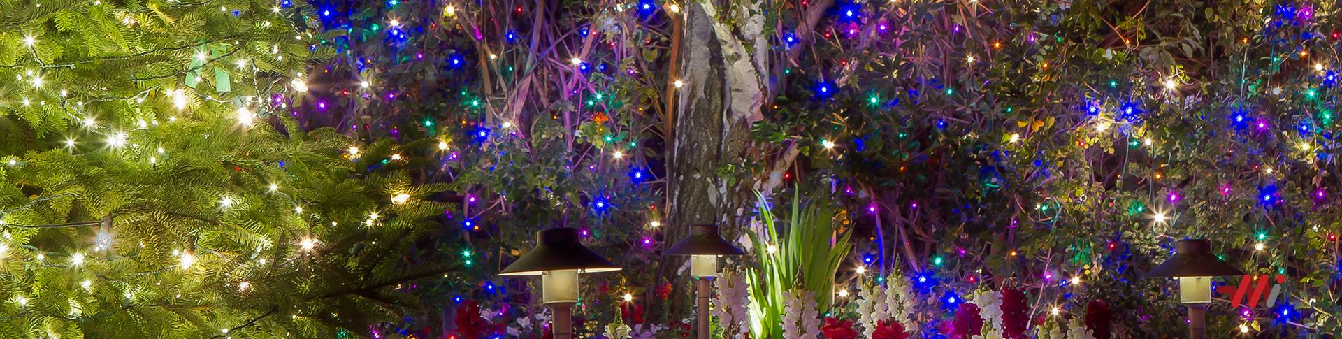 Holiday Lighting Installation