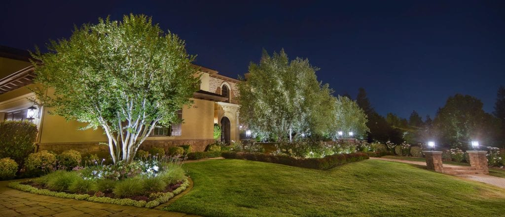 Winter Landscape Lighting | Mobile Illumination