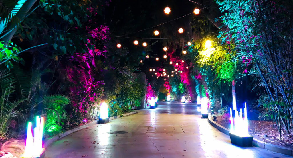 LA Zoo Lights Path